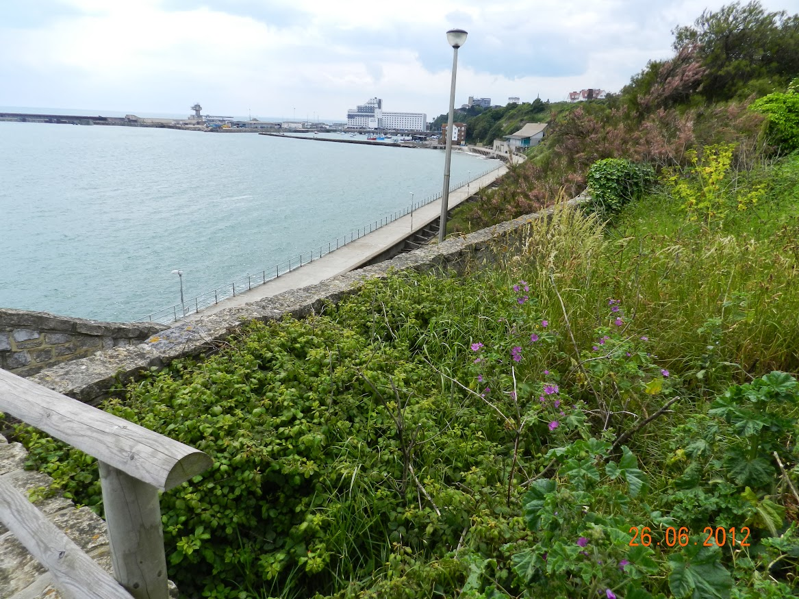 Citywalk in , United Kingdom, visiting things to do in United Kingdom, Travel Blog, Share my Trip