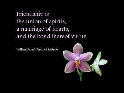 Friendship Quotes Backgrounds. Quotes About Friends And