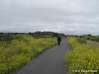 Coastside Trail, a bike trail next to the coastline