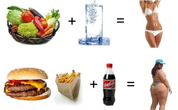 The Healthy Lifestyle