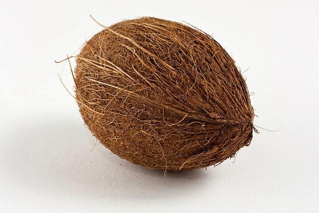 kokosnoot anw algemeen nederlands woordenboek