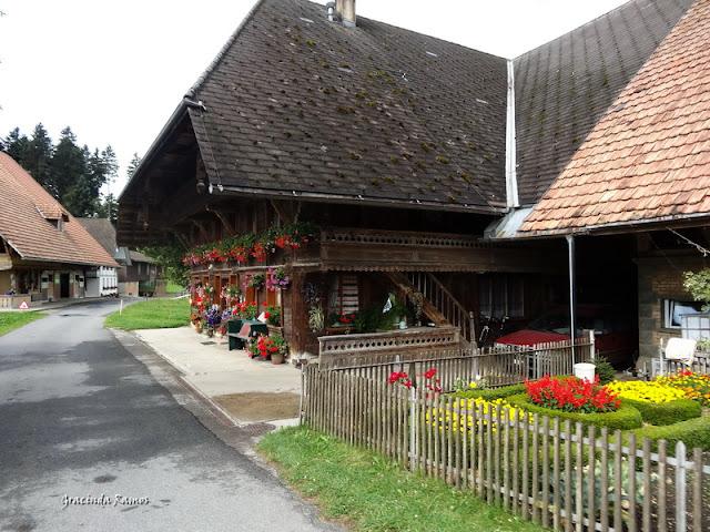 passeando - Passeando pela Suíça - 2012 - Página 14 DSC05101