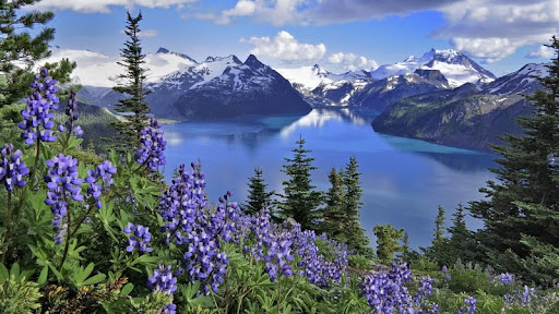 Garibaldi Lake, Garibaldi Provincial Park, British Columbia.jpg