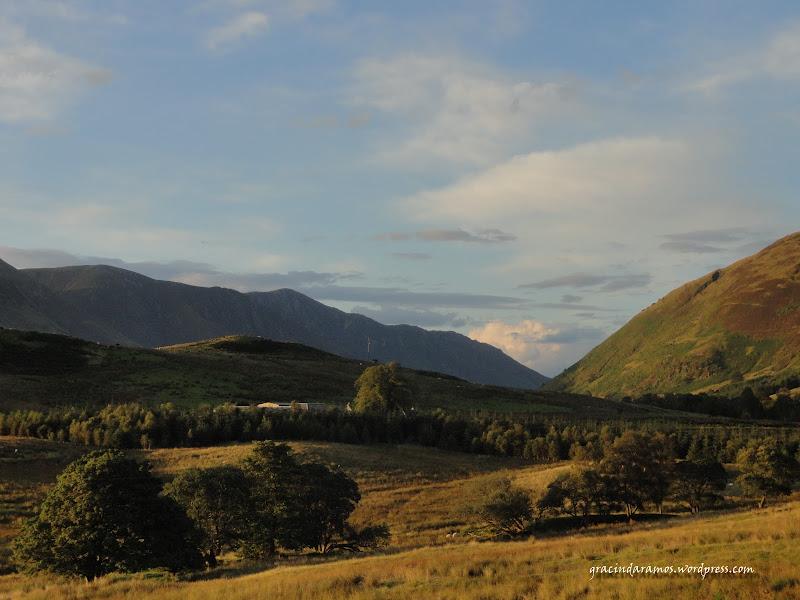 - Passeando até à Escócia! - Página 15 DSC03954