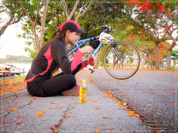 ซัลโว-sanvo-เทคนิคการขี่จักรยานให้ได้นานๆ สำหรับมือใหม่