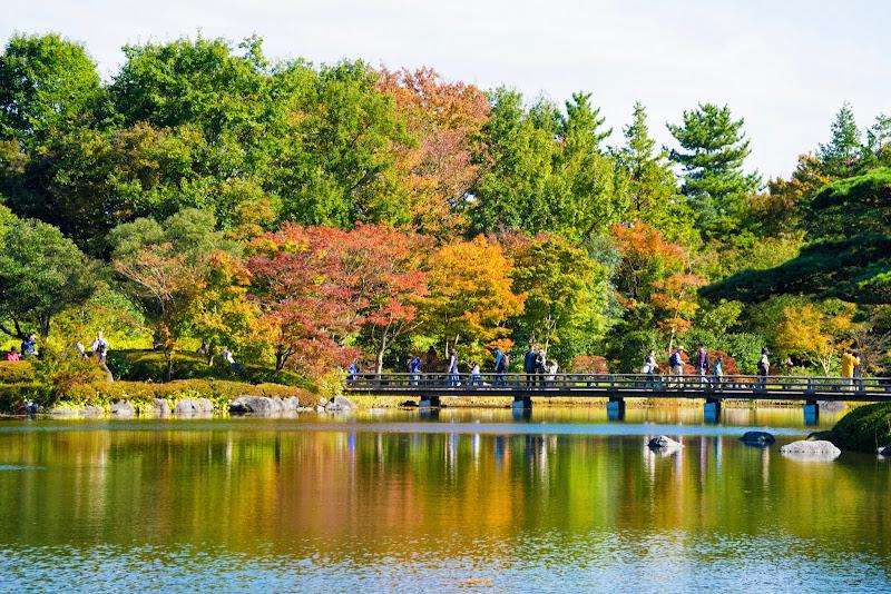 昭和記念公園 日本庭園 紅葉 写真4