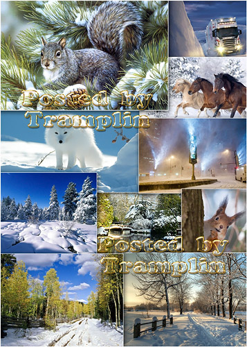 Зима – Сказочная, загадочная и непредсказуемая