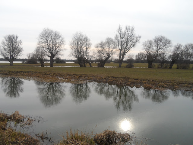 Water meadows near Godmanchester