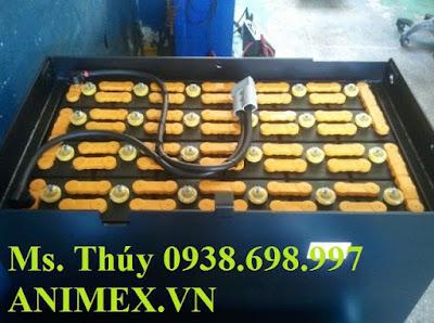 Acquy GS Yuasa 48V 565AH