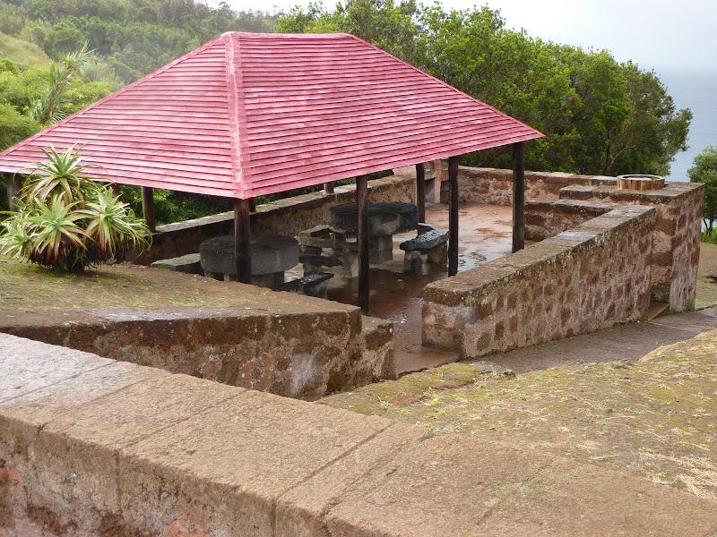 Açores- Natureza viva P1000908