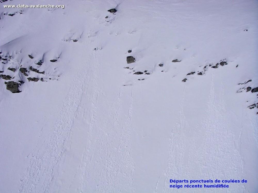 Avalanche Vanoise, secteur Pointe de l'Echelle, Couloir de la Face Est - Photo 1