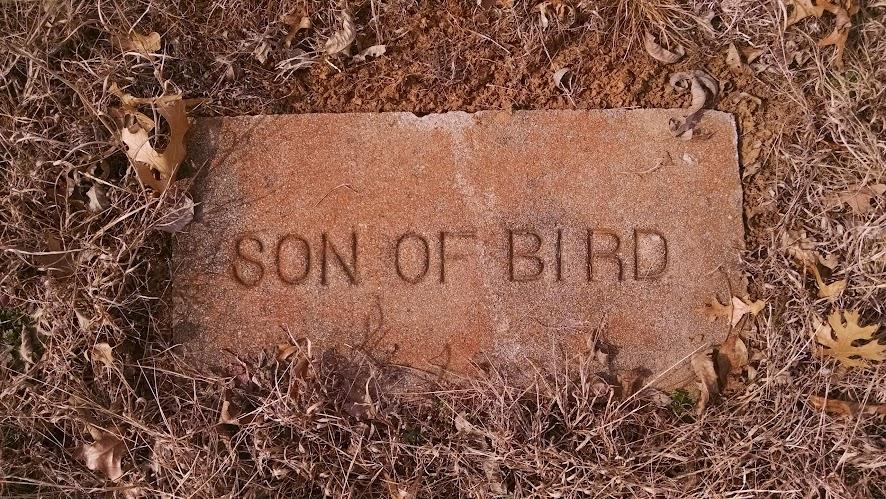 cemetery gravestone: