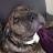 Susyn Klein avatar image