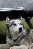 skeptischer Blick