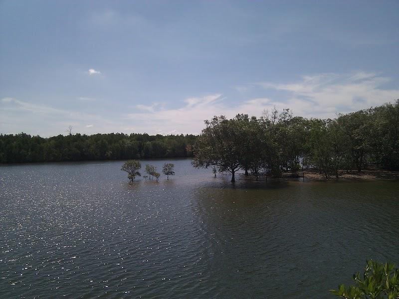 river at Krabi