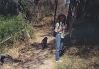 Caminando entre babuinos por la orilla del Zambeze