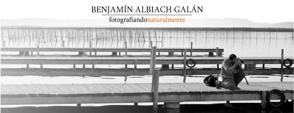 Blog de Fotografia de Naturaleza y otros trabajos - - Benjamin Albiach Galan