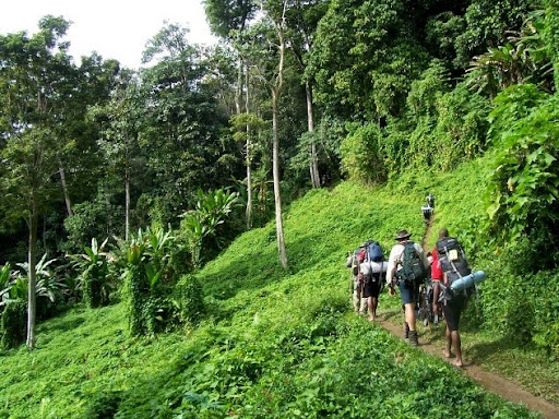 The Kokoda And Black Cat Trails