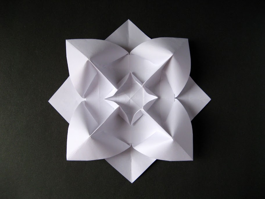 Origami foto Fiore bombato - Curved flower by Francesco Guarnieri