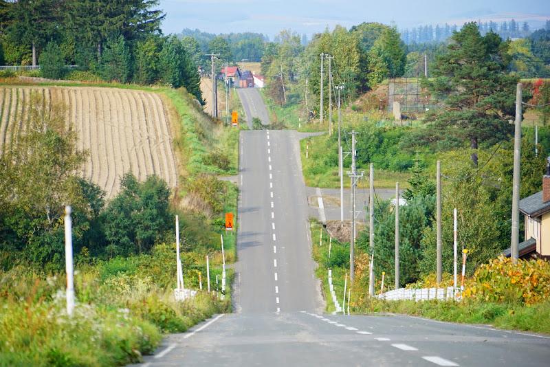 美瑛 ジェットコースターの路 写真1