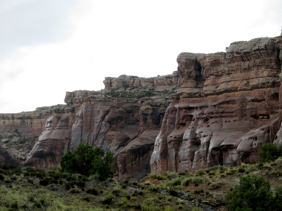 Wet canyon walls in Courthouse Wash