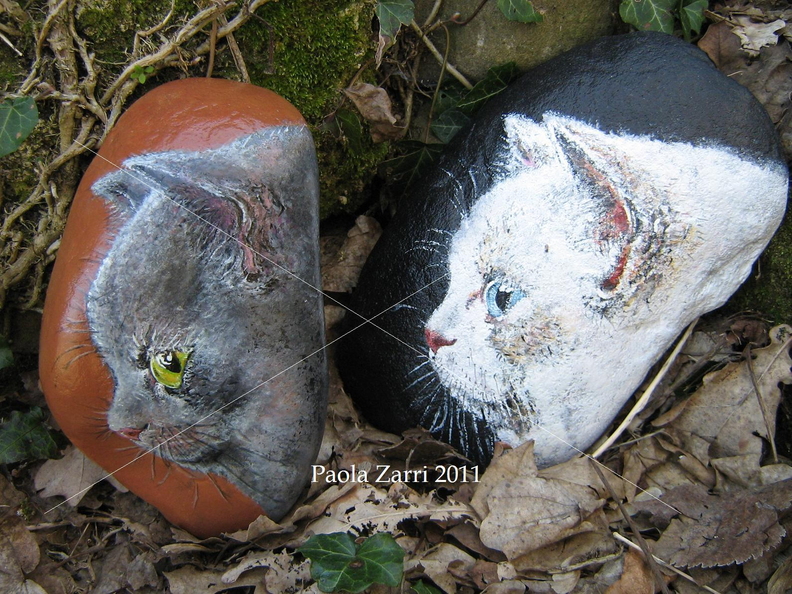 Pzcreazioni i sassi di paola for Sassi per tartarughe