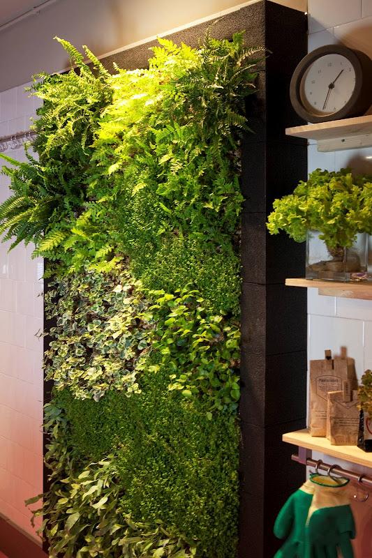 Jardín vertical de interior en una reforma de una cocina.