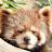 Kjelti Koh avatar image