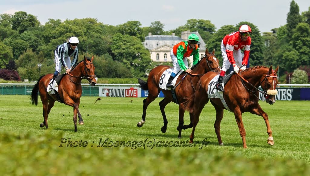 Photos Longchamp 25-05-2014 IMG_1184