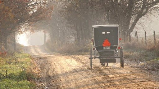 Amish Horse and Buggy, Near Topeka, Indiana.jpg