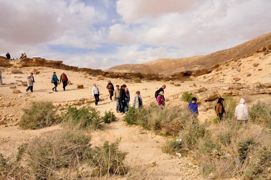 Поход к Эйн Йоркам. Экскурсия гида Светланы Фиалковой в пустыню Негев.