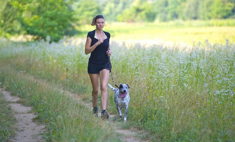 6 tips para salir a correr con tu perro