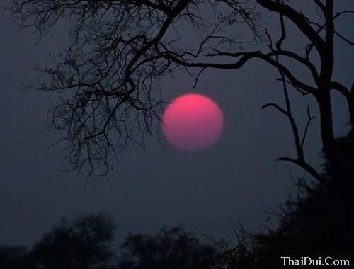 Những bài thơ tình đêm mùa Đông hay nhất
