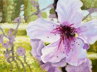 """""""Kirschblüte in Spanien"""" 60x80cm Öl auf Leinwand"""