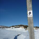 Snowshoe sign beside Kosciuszko Rd (299614)