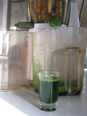 juicing wheatgrass with Hurom juicer