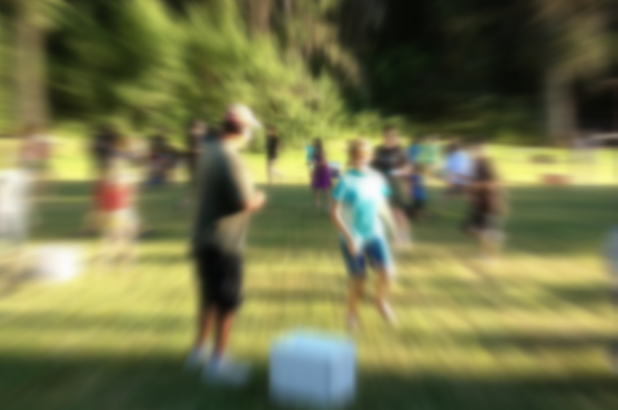Picture of a group of people playing a game in the park. Because the picture is very blurred, none of the people are recognizable.