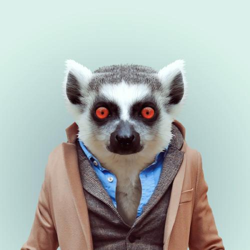 *Zoo Portraits動物時尚秀:正經八百時裝篇! 19