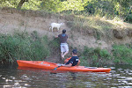 you're welcome goat.  It didn't run away...just stayed there bleating gratefully until we paddled away