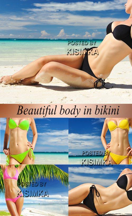 Stock Photo: Beautiful body in bikini