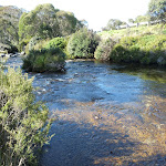 Thredbo River (273944)