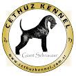 Cethuz K