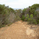 The top of Little Tallow spur track (20966)