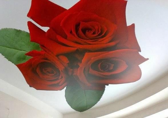 Фотопечать цветов на натяжном потолке от производителя