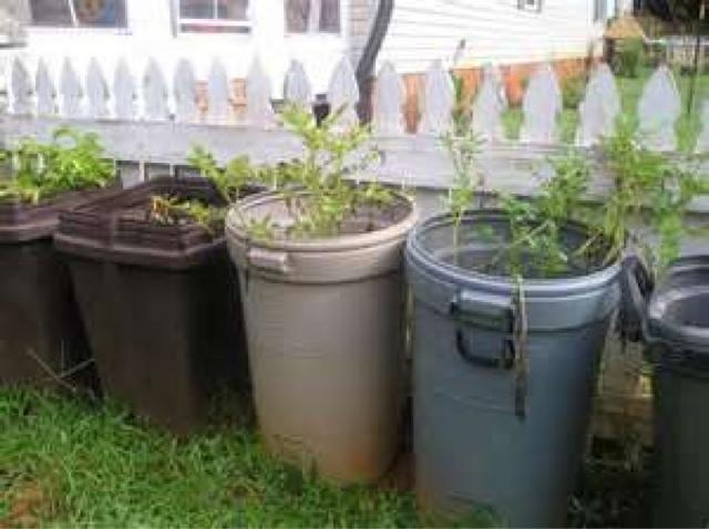 Gardening Tip Trash Cans