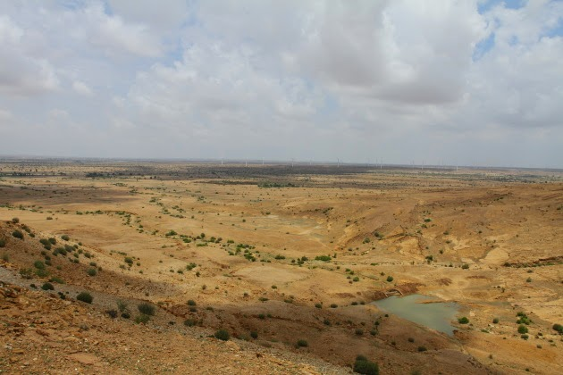 Oasis in the Thar