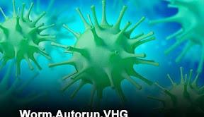 10 virus mas peligrosos del verano