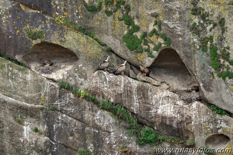 Cueva del Pajarraco