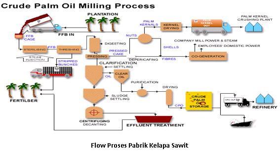 Apa itu pabrik minyak kelapa sawit oil palm psychologist basic management supervisory ccuart Gallery