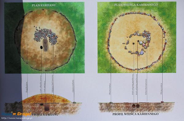 Kręgi Kamienne w Leśne - plan kurhanu i wieńca kamiennego